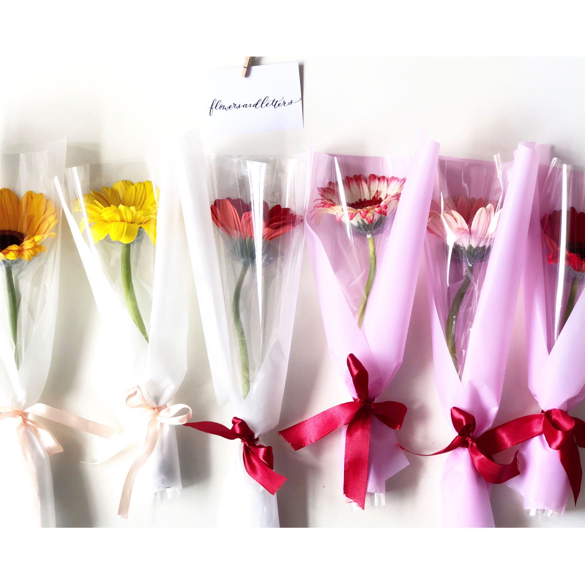 Gerbera daisy fresh flower bouquet real flowers single stalk hand photo photo photo photo izmirmasajfo Choice Image