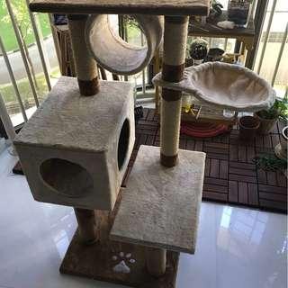 Cat Condo, Scratch pole