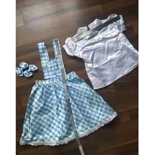 Dorothy Gale's (Wizard of Oz) Girl's Costume paired with 2 hairclips