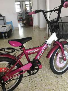 Kids Bicycle (rarely used)