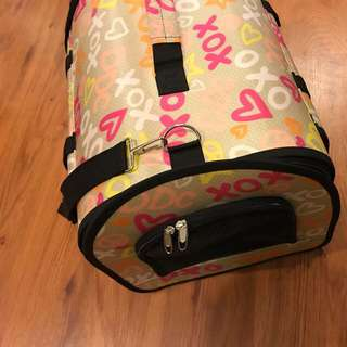 Pet Carrier/ Bag