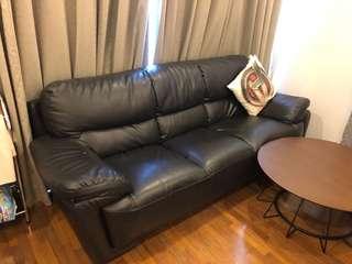 Sofa (Casa Leather) 3+2 seater