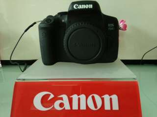 Kredit kamera CANON selama 6 bulan