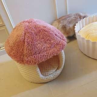 🚚 香菇 寵物床