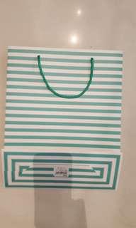turqoise striped bag