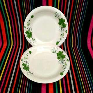 "2x DARLIE Porcelain Deep Plate 9"""