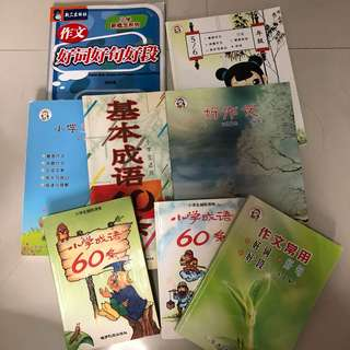 primary school chinese idioms and composition books