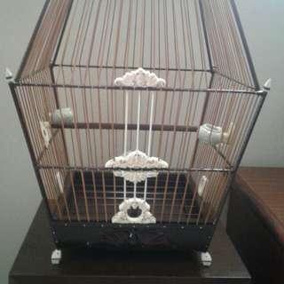 Jambul Cage 17s
