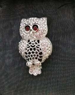 New Classy owl brooch