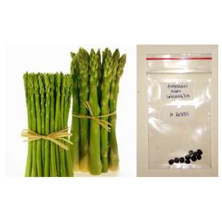 Asparagus Mary Washington Vegetable Seeds