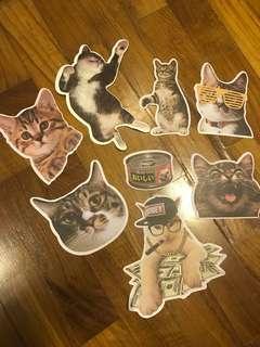 Big/Meme/funny/cute cats sticker/decal