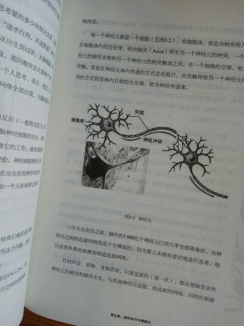 心理學NLP重塑心靈 思想迴路 由改變開始 生命會得更美好