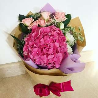 Hydrangea Blossoms - Colour Me Pink Series 🌺 || Mothers' Day Fresh Flowers Special 💐