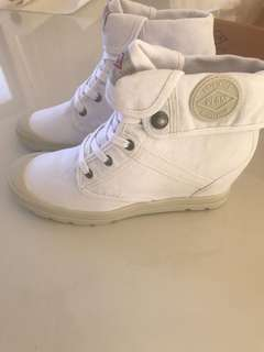 Palladium women's shoes.New in box. Size 38