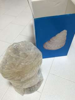 Decorative Ornament shell- fengshui, collectibles, antiques