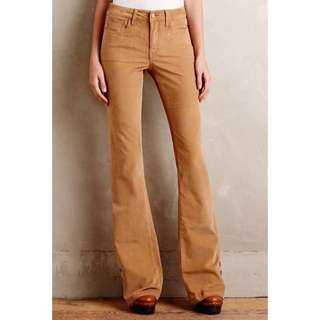 Aland Brown Cord Jeans with Flare/ Bootcut
