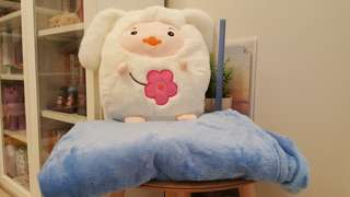 Soft plush come with blanket