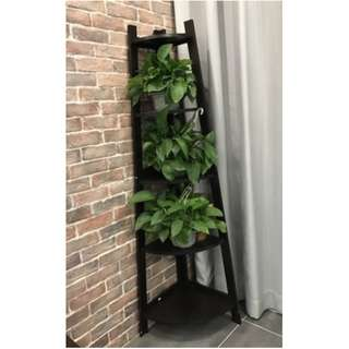 Corner Display Shelf - Plant Stand/ Flower Stand/ Decorative