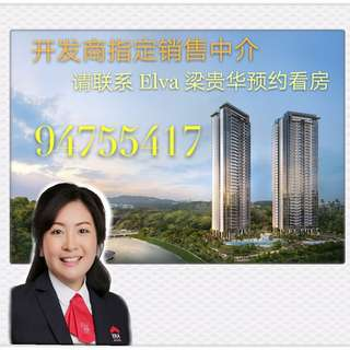 Twin Vew New Project in West