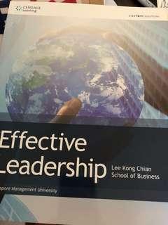 Effective leadership (Lee Kong Chian school of business)
