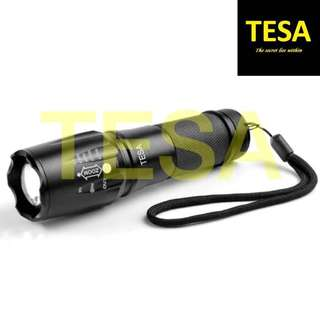 Torchlight Flashlight
