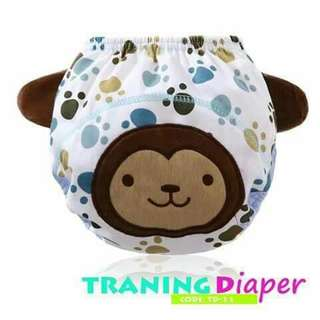 Baby Training Diaper - TD21