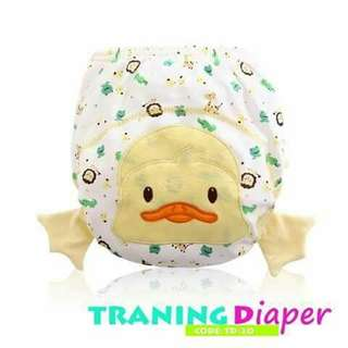 Baby Training Diaper - TD20