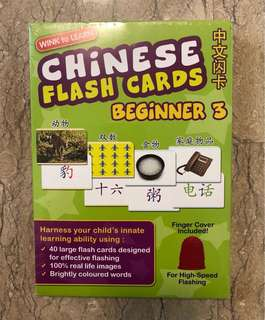 Wink to Learn Chinese Beginner 3 Flashcards