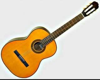 Classical Guitar Takamine Dragon D30N
