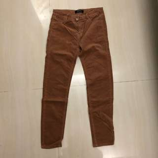 Velvet brown long pant