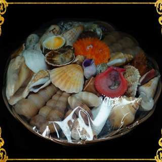 Assorted Shell in Native Basket (180 grams)