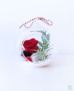 Aerium: Amore Globe (L) with preserved rose and air plant