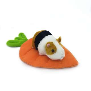 Carrot Lounger (Bed/ Potty)