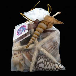 350 grams Shell Pack