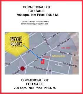 HOUSE & LOT FOR SALE - 314 sqm Dr Pilapil Sagad Pasig City