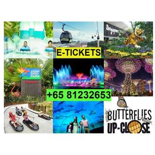 Jurong bird park / Zoo / River safari / Adventure cove waterpark / Sea Aquarium / Universal studio / Snow city