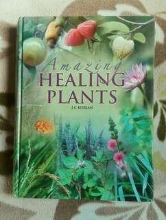 Amazing Healing Plants