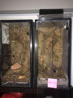 Two 2ft vivariums