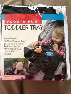 JL Childress Food N Fun Toddler Tray