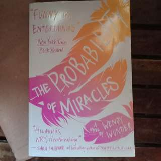 Probability of Miracles (YA book)