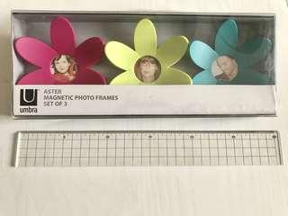 全新 umbra 磁石 花花 相框 magnetic photo frames