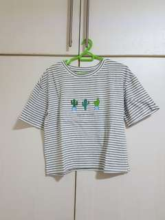 Cactus Striped Crop Top