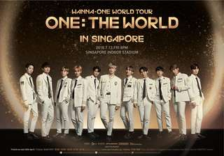 Looking for Wanna One concert Ticket VIP / CAT 1  Standing