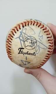 🚚 「兄弟棒球隊🐘多人簽名棒球」
