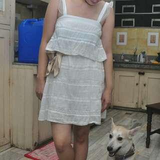 Mango Frilled Cotton Dress