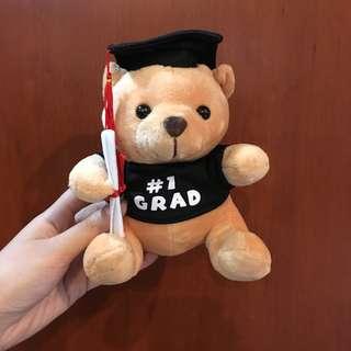 Teddy Bear / Medium Size Graduation Bear