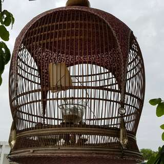 Morobok cage