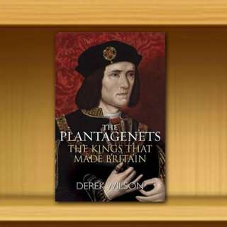BN - The Plantagenets : The Kings That Made Britain By Derek Wilson