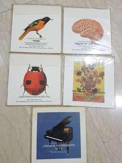 Encyclopedia Knowledge Series