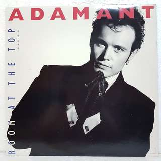 Adam Ant - Room At The Top Vinyl Record